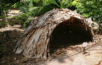 aboriginal bush shelter