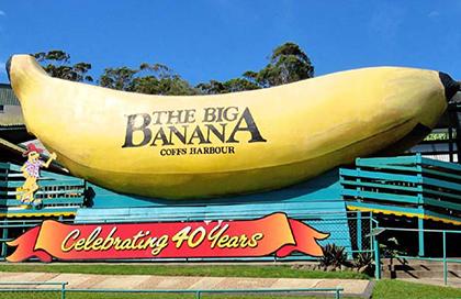 Visit The Big Banana